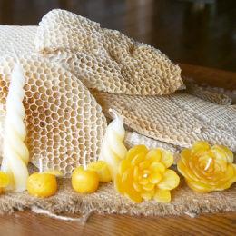 蜂の駅ひふみ養蜂園