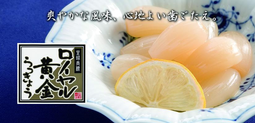 komiyamiko-39-r